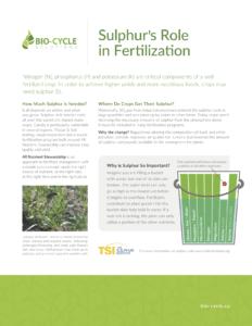 Sulphurs-Role-in-Fertilization